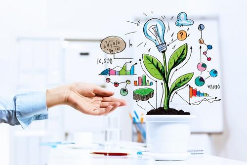 business-finance-options